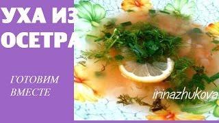 Оригинальные рецепты из картофеля быстро и вкусно